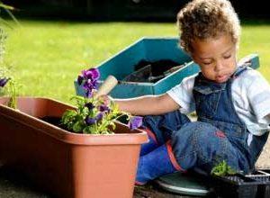 kazanou atelier jardinage
